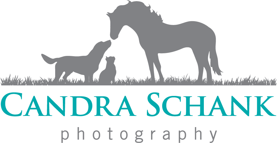 Candra Schank Photography